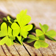 Fresh clover leaves over wooden background — Stock Photo #9148970
