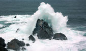 Waves on the coast with force — Stock Photo