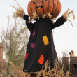 Pumpkin-headed scarecrow for halloween — Stock Photo