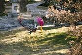 Multicoloured bird of iron sculpture — Stock Photo