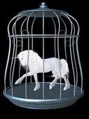 White unicorn — Stock Photo