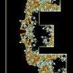 Letter E. — Stock Photo