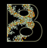 Letter B. — Stock Photo