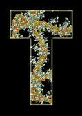 字母 t. — 图库照片