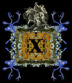 Písmeno x. — ストック写真