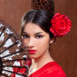 Gipsy flamenco dancer Spain girl with red rose - Stock Photo