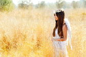 Angel girl in golden field with feather white wings — Foto de Stock