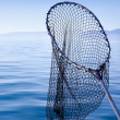 Fishing landing net in blue sea — Stockfoto