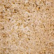 Limestone sandstone texture with animal shells - Stock Photo