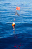 Longliner and trammel net buoy with flag pole — Stock Photo