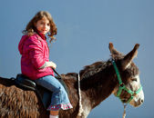 Donkey mule with kid little girl riding happy — Stock Photo