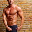 筋形男ジムのレンガの壁でポーズ — ストック写真