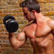 Muscle shaped body man with weights on brick wall - Stockfoto