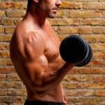Muskel geformten Körper Mann mit Gewichten auf Ziegelmauer — Stockfoto