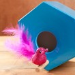 Bird in blue nest house polygonal shape — Stock Photo #8956265
