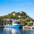 Denia mediterranean port village with castle — Stock Photo #8962334
