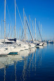 Blue Denia marina port in Alicante Spain — Stock Photo