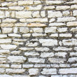 Limestone wall — Stock Photo #10167144