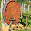 Wine barrel in the vineyard — Stock Photo #10729851