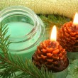 Stock Photo: Pine spa