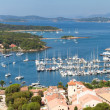 Panoramic view of Porquerolles island in France — Stock Photo #8319840