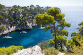 Calanques of Port Pin in Cassis — Stock Photo