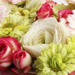 Stock Photo: Colorful flower background