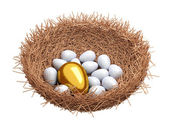 A gold egg is in a nest — Stock Photo
