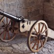 Field gun — Stock Photo