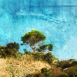 Stock Photo: Tree on a Hill (Texture)
