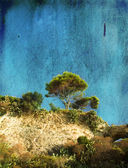 Tree on a Hill (Texture) — Foto Stock