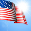 Vettoriale Stock : Vector Flag of the United States