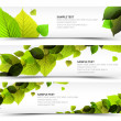 Royalty-Free Stock Vector Image: Vector Fresh spring horizontal banners