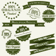 Vector Old retro vintage elements for organic natural items — Stock Vector