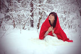 Beautiful young girl in snow winter forest — Stock Photo