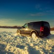 Land Rover Discovery — Stock Photo #8369903