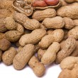 Peanuts on white — Stock Photo