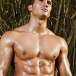 Stock Photo: Male model with muscles on countryside