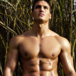 Male model with muscles on the countryside — Stock Photo #8973282