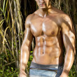 Male model with muscles on the countryside — Stock Photo #8973405