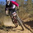 Downhill competition — Stock Photo #9860890
