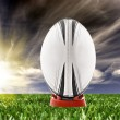 Stock Photo: Rugby ball ready to be kicked on field