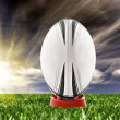 Royalty-Free Stock Photo: Rugby ball ready to be kicked on the field