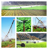 Collage of irrigation images — Stok fotoğraf