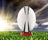 Rugby ball ready to be kicked on the field — Stock Photo