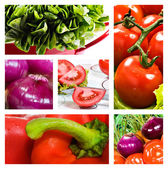 Collage of salad with tomato onion lettuce and red sweet pepper — Stock Photo