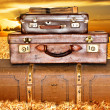 Traveling suitcases in a wheat field at sunset — Stock Photo #10398245