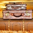 Traveling suitcases in a wheat field at sunset — Stock Photo