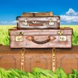 Green wheat field with three old leather suitcases — Stock Photo