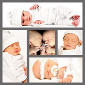 Collage of new born twins — Stock Photo